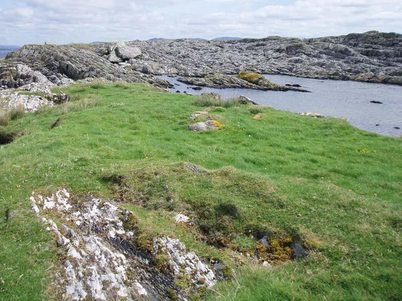 Chough Coastal GrasslandImage by Michael Martyn